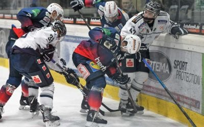 Newsletter #22: Kassel Huskies