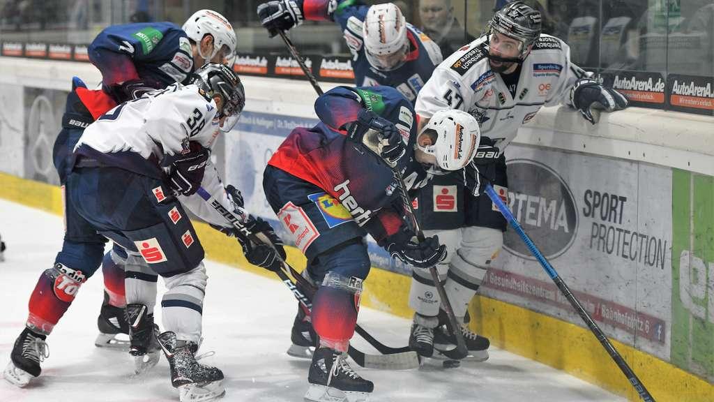 Newsletter #22: Kassel Huskies