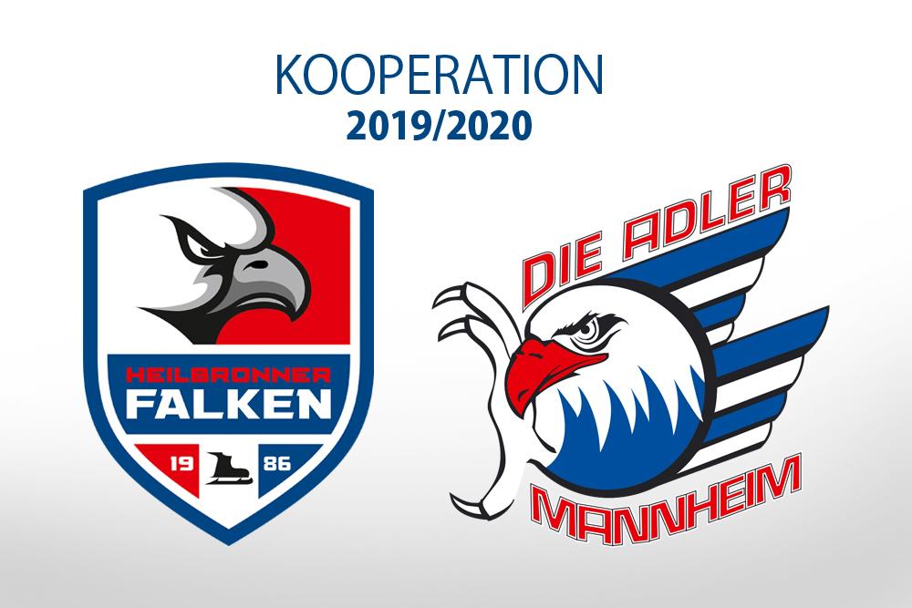 Falken kooperieren weiterhin mit Mannheim