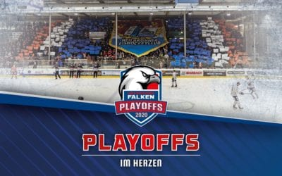 "Falken starten Aktion ""PLAYOFFS IM HERZEN"""