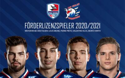 Fünf Förderlizenzspieler für die Heilbronner Falken