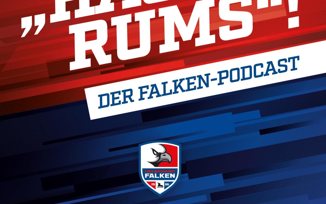 """""""HAU-RUMS"""" der Falken-Podcast / Folge 1"""